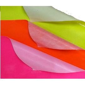 Lonita silicone com forro 25 x 35 cm